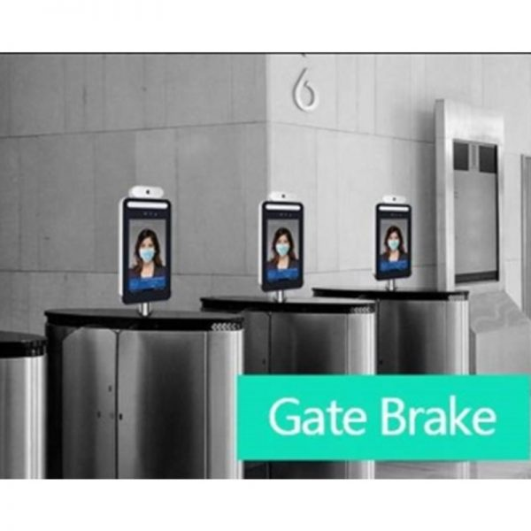 Digital Thermometer - Gate Brake